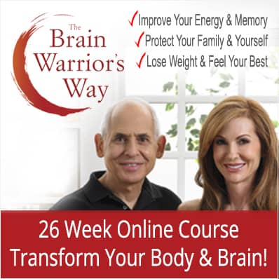 The Brain Warriors Way 26 Week Online Course