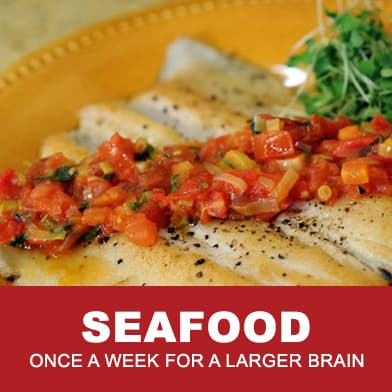 Seafood Recipes For All Brain Warriors by Tana Amen BSN RN